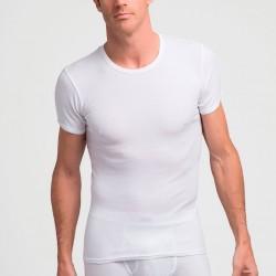 Camiseta manga corta 306 Abanderado